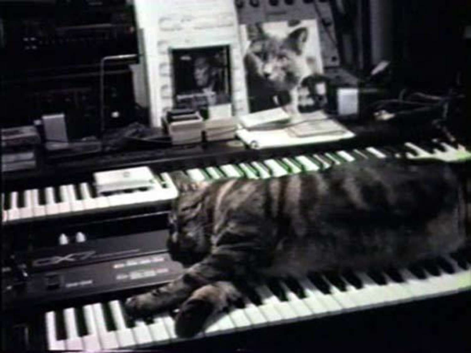 Opening on January 31: Amanda Ross-Ho, HURTS WORST + Chris Marker, Cat Listening To Music + Stefan Tcherepnin, The Mad Masters